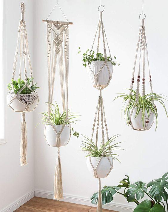 نگهداری از گیاهان در تابستان